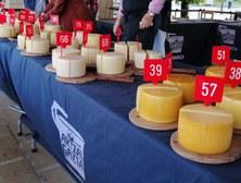 13 d'octubre de 2019 - XXXVI Concurso de queso Idiazabal de pastor de Euskal Herria