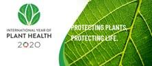 2020 - Any internacional de la Sanitat Vegetal.  Protegir les plantes, protegir la vida