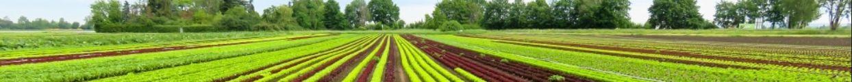 Ciencies agronomiques